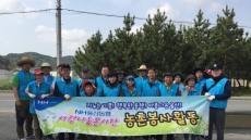 NH울산농협, 울주군 삼평리에서 농촌일손돕기