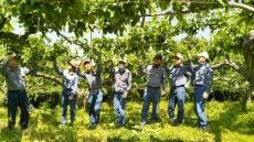 온산농협-한국석유공사, 농번기 맞은 거남마을 일손돕기