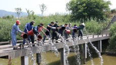 김해시, 화포천에 메기 18만마리 종묘 방류