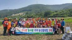 울산 방어진농협 여성대학, '소호마을 일손돕기'