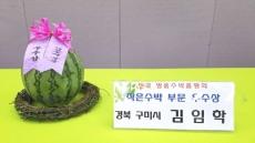 """구미시 """"씨없는 미니수박"""" 제1회 전국 수박 품평회 우수상 수상"""