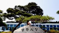 선비의 고장 '영주 상징' 관광기념품 공모전 에 참여 하세요