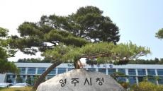 영주시, 지역발전사업 우수기관 3년 연속 선정