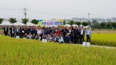 울산 농소농협, 벼 품종 비교시범포 종합평가회 개최