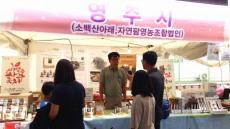 영주 농특산물 제천국제한방엑스포 서 '건강한 매력' 자랑