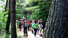 봉화군,국립백두대간 수목원 트레킹 페스티벌 개최