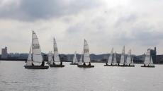 포항 영일만서 12일 포항시장배 딩기요트대회 열린다.