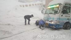 울릉도 폭설,시내버스 운행 전면 중단