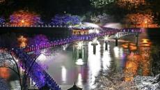 안동 월영교 야행(夜行) 관광명소 조성