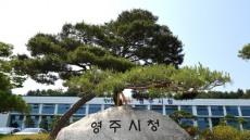 영주시, 中 북경컨벤션 센터서 요우커 대상 영주관광홍보