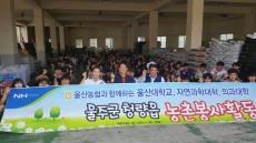 울산농협-울산대학교, 양파농가 일손돕기 참가