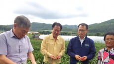 경북농협, 폭염피해 극복안간힘... 발빠른 지원 대책 실행