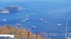 [포토뉴스]울릉도 연안에 피항 온 중국어선
