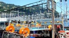 울릉도 오징어 어획량 사상 '최악' 생계유지대책마련 고심