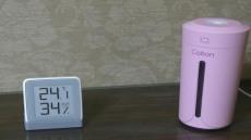 [리뷰] 나만을 위한 미니 USB 가습기, 브리츠 BZ-HUM20
