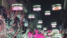 [헤럴드 포도]충복 제천 도심에 겨울 벚꽃 활짝