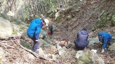울릉도 산나물 채취 실종자 하루 만에 숨진 채 발견