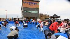 '제12회 영덕 축산항 물가자미 축제' 오는 25일 개막