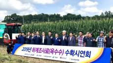 경북농협 청송서 하계 조사료(옥수수) 수확시연회 가져