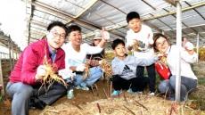 영주시, 2019 풍기인삼축제 내달12일 개막....성공축제 준비착착