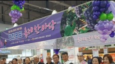 영천시, 울산농협유통센터서 '영천포도축제 한마당 특판행사' 실시