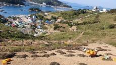 통영시 지정 '고메원도넛' 욕지도 섬 문화축제 참가