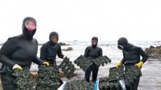 포항시, 풍요로운 어장 조성사업에 46억원 투입..황금어장 가꾸기에 안간힘
