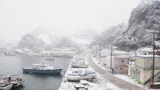 [헤럴드 포토]눈 내리는 어촌항구