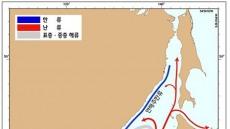 독도·울릉도 해역에 소용돌이 왜 생기나..국립해양조사원 바다 소용돌이 분석