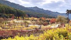 가을옷 갈아입은 국립백두대간수목원