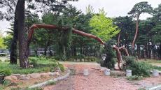 태풍때 쓰러진 금강소나무 울진 엑스포공원 지키는 장승됐다
