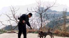 예천군, 유해 야생동물 피해방지 위해 야생동물 피해 방지단' 운영