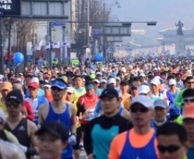 [펀펀한 런-생활체육 마라톤훈련기] #19 서울국제마라톤 참가