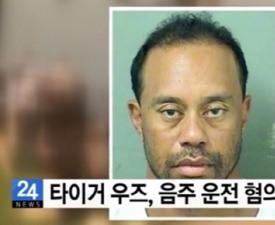 '음주운전 혐의로 체포' 타이거우즈, 불륜에 동성애까지?