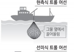 '전국 오징어 채낚기 어업인들 뿔났다'