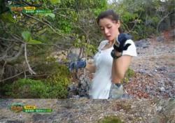 '정글의 법칙' 헬로비너스 나라, 돋보인 '정글생존기'