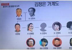 김정은-김정남 가계도 살펴보니…피살 이유 있나?