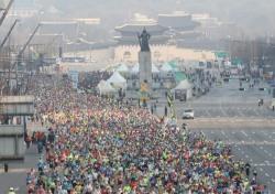[펀펀한 런-생활체육 마라톤훈련기] #18 - 다가온 서울국제마라톤 마무리하기
