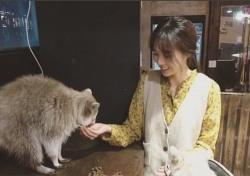 [스낵뉴스] 채수빈, 너구리-라쿤에게 빠졌다?…남다른 동물사랑