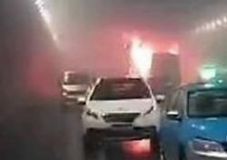 중국 유치원생 교통사고, 韓 어린이 피해 컸던 이유?