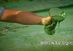 """[네티즌의 눈] 이명박 정부 4대강 손실액 얼마나? 감사에 """"정치보복 해석 금물"""" 국민쉴드 나온 이유"""