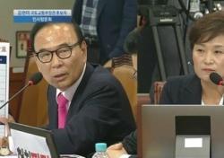 김현미 의원의 논문, 기술적 실수 vs 의도적 표절