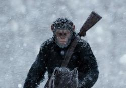 '혹성탈출: 종의 전쟁', 8월 개봉 확정..시리즈 흥행 이어갈까