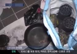 청주이어 대구…또 동반자살 추정 변사체 발견 '자살 전 어떻게 만났나?'