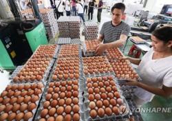 이마트 계란서도 살충제 성분 비펜트린 검출, 어느 곳 제품?