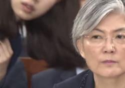"""김중로 의원, 강경화 장관에 뭐라 했길래? """"사과 할 일 없어"""""""