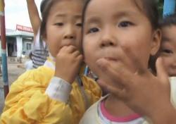 800만 달러 대북인도지원 논란, 역대 정부는 어땠나? 위협 속 지원액 천차만별
