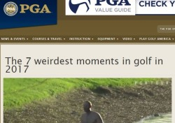 미국PGA 선정 '올해 골프의 7가지 괴상한 상황'