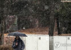 오늘 날씨 한강도 얼었다..스케이트장 개장은 언제쯤?