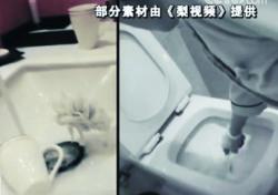 """중국 호텔 청소 '천태만상'…""""변기 솔로 이걸 닦았다고?"""""""